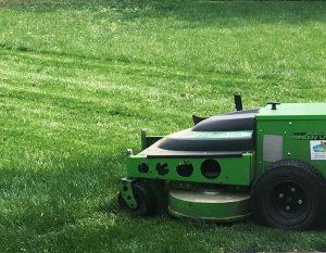 Loveland lawn mowing